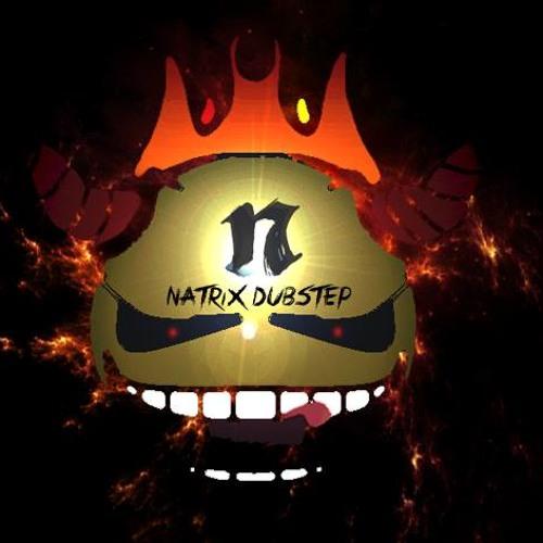 Natrix 2nd Account's avatar