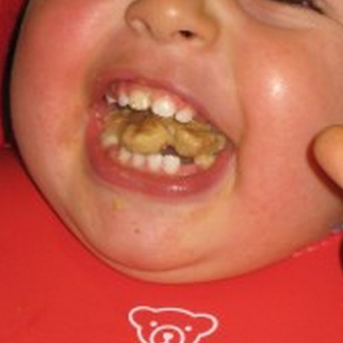Mouthful of Biscuit's avatar