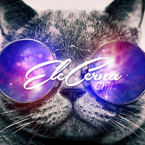 Ele Cerna's avatar
