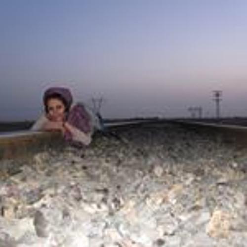 Nahid Shafizadeh's avatar