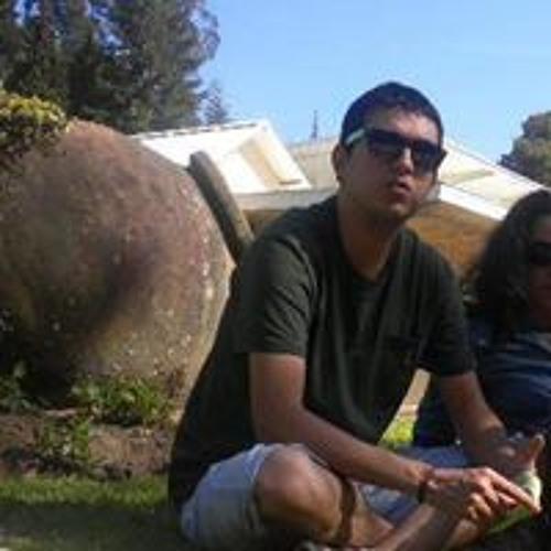 Diego Alonso Rodriguez's avatar