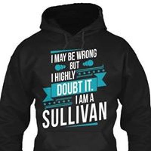 Ted Sullivan's avatar
