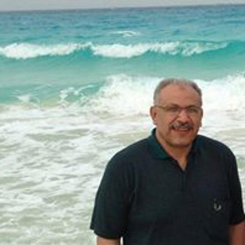 Hesham Abo Elmagd's avatar