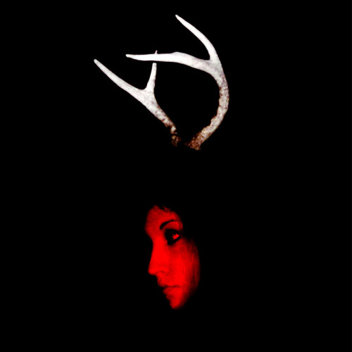 RED LIGHTS DESCENDING's avatar