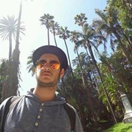 Luis Carreiro's avatar
