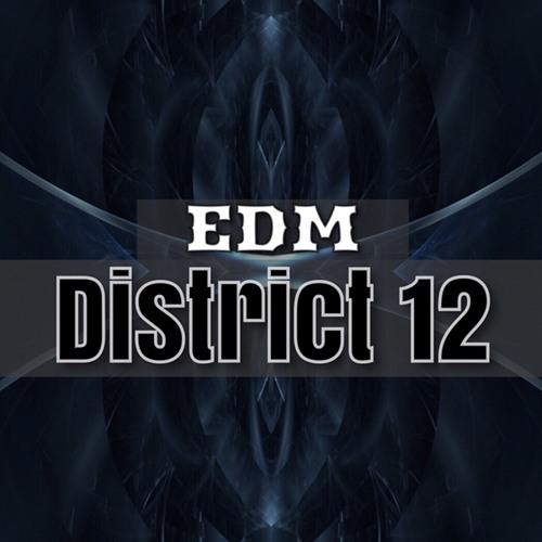 Edm District 12's avatar