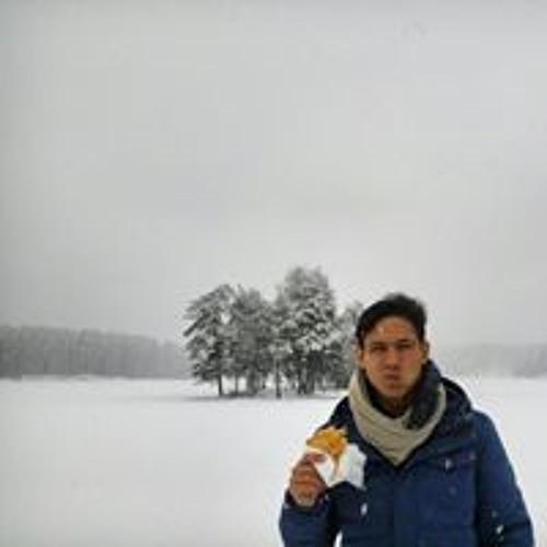 Diego Reyes Weiß's avatar