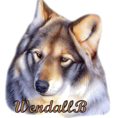 wendallb's avatar