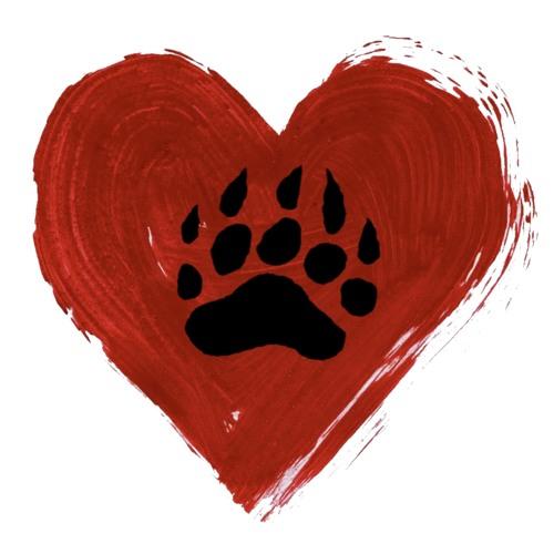 Heart of a Bear's avatar