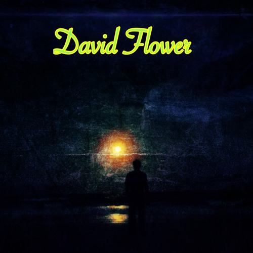 David Flower's avatar