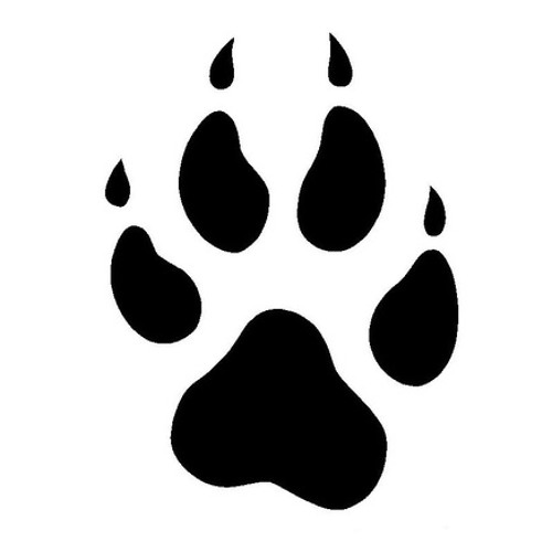 Wolf Paw's avatar