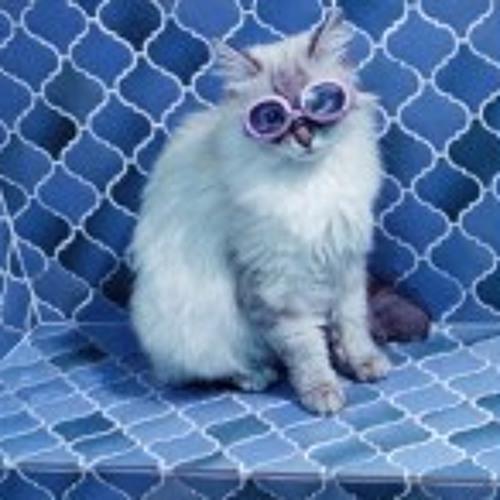 maggiecatshak's avatar