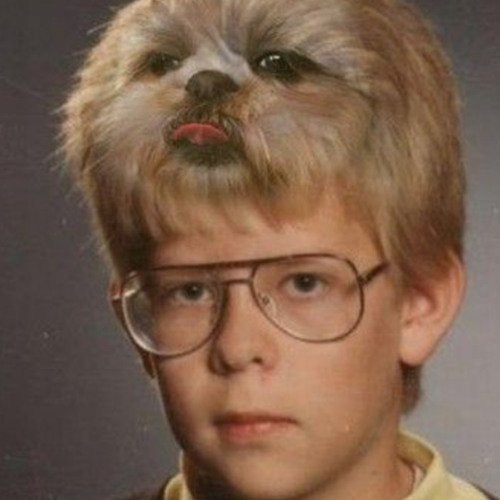 Tom Janzen's avatar
