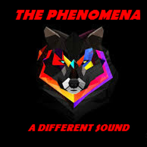THE PHENOMENA (Official)'s avatar