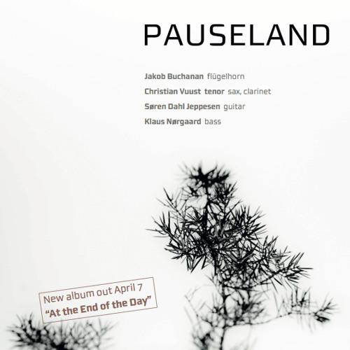 PAUSELAND's avatar