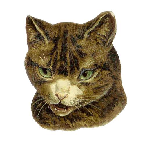 FurFur PurPur's avatar