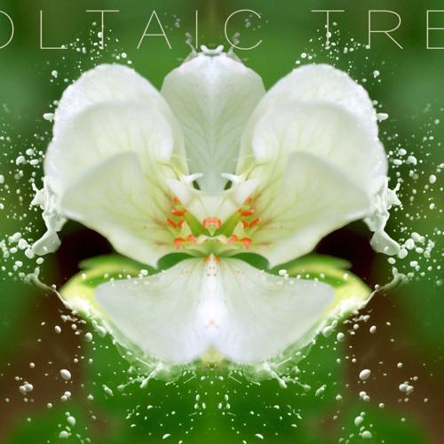 Voltaic Tree's avatar