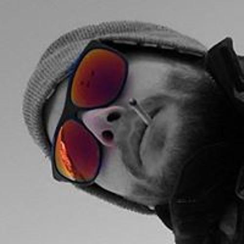 Nico Cavallin's avatar