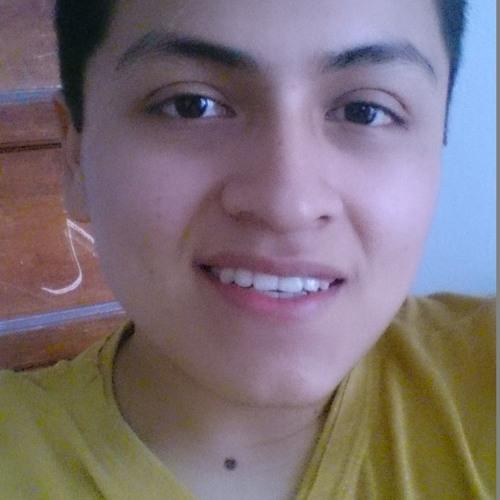 Ghersson Atahua Hernandez's avatar