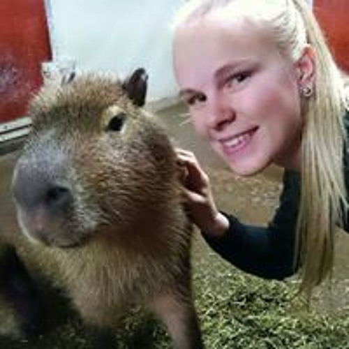 Sara Magnusson's avatar