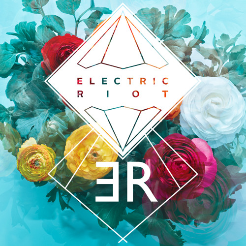 Electric Riot's avatar