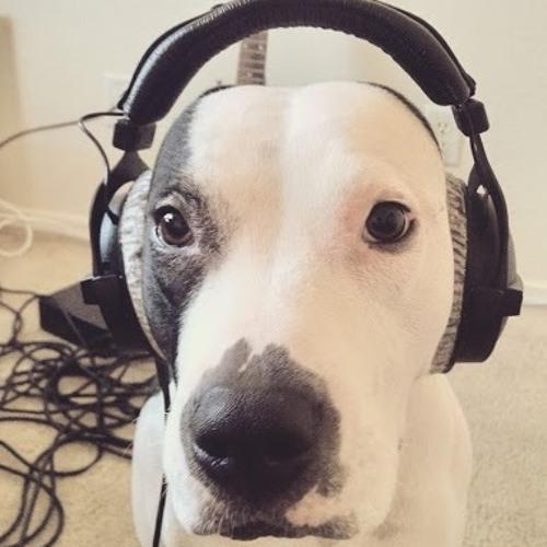 DougGuevaraMusic's avatar