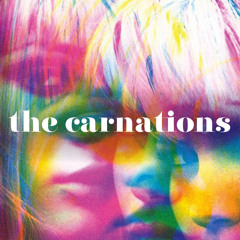 The Carnations