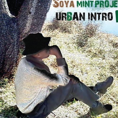 Soya Mint Project's avatar