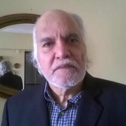 Mário Cota Cruz Costa's avatar