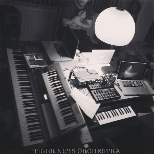 Tiger Nuts Orchestra's avatar