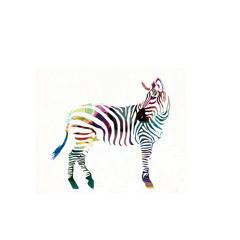 Lunar Zebra