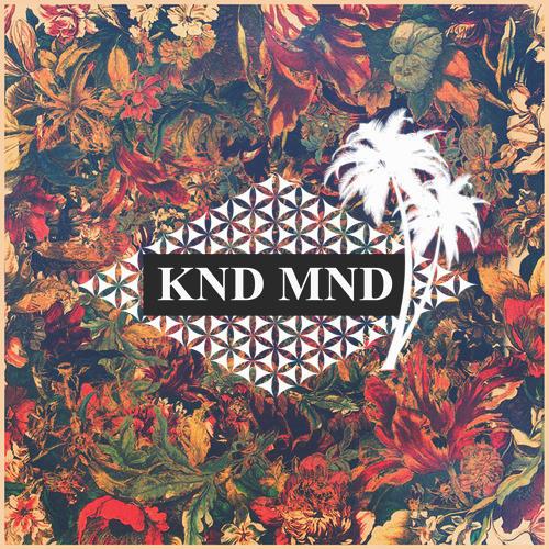 KND MND's avatar