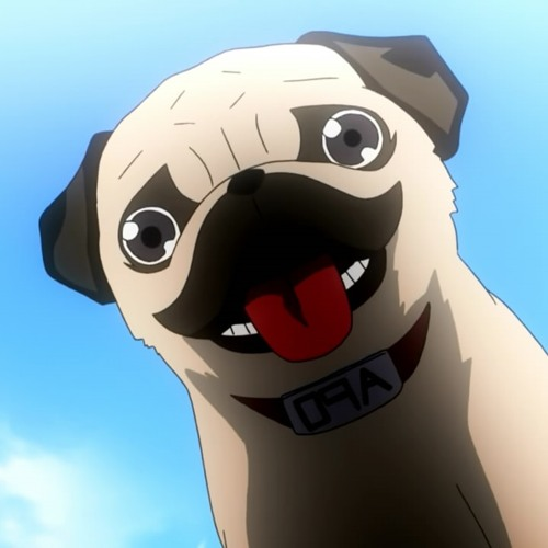 APO ザ·犬 。's avatar