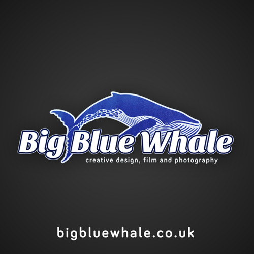 Big Blue Whale Sound's avatar