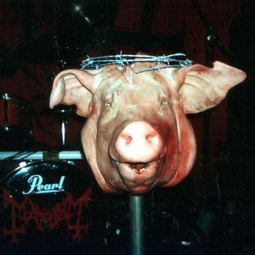 Black Metal & Bacon's avatar