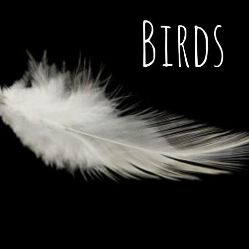 Birds's avatar