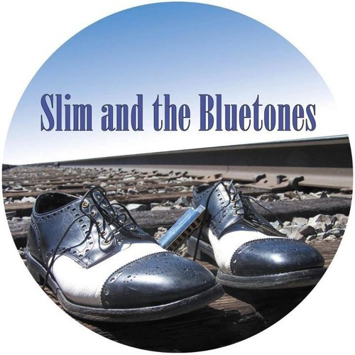 Slim and the Bluetones's avatar