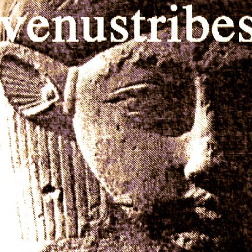 venus TRIBES's avatar