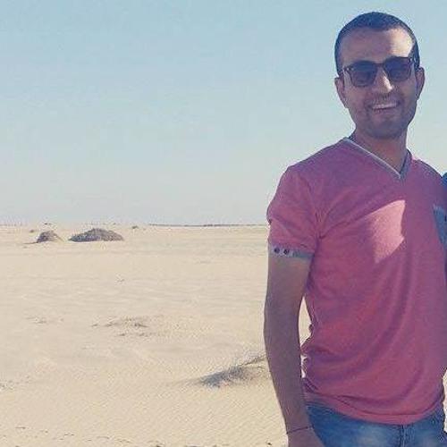 Mohsen Marwan's avatar