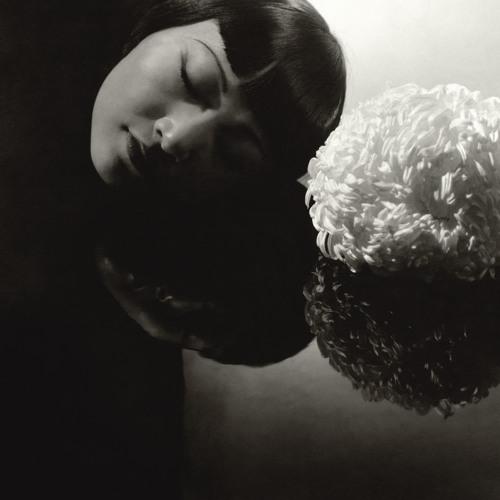 meilyn's avatar