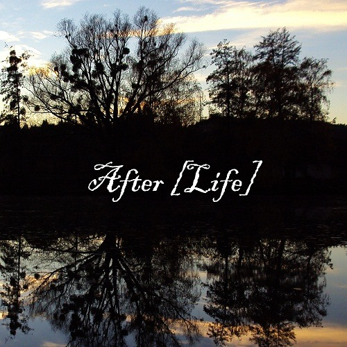 After [Life]'s avatar