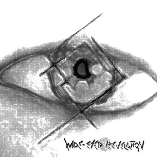 Wide-Eyed Revelation's avatar