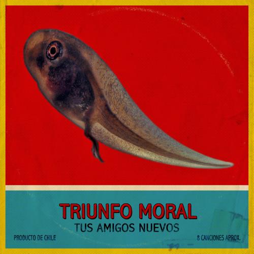 tusamigosnuevos's avatar