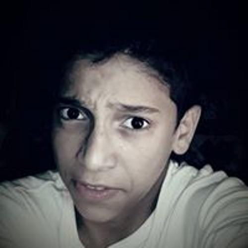 Mahmoud Abo Amer's avatar