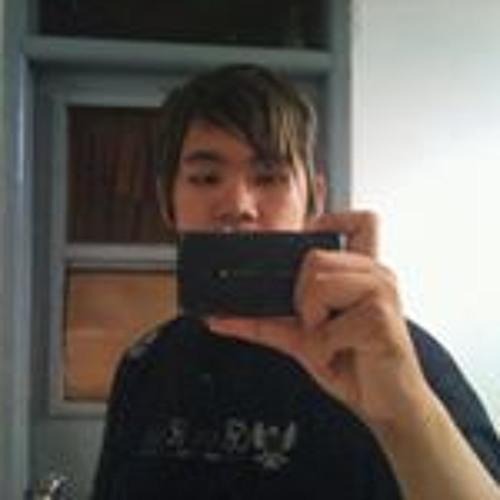 Dominicus Hans's avatar