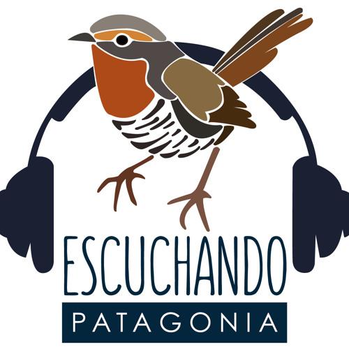 Escuchando Patagonia's avatar