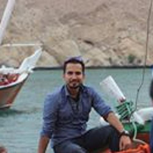 Syed Aqeel Naqvi's avatar
