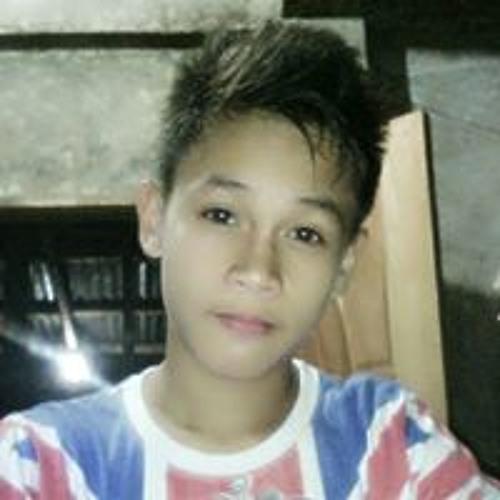 Dominic Vincent B Alfante's avatar