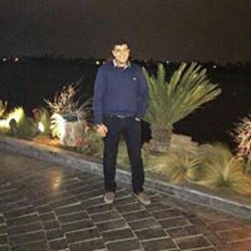 Mohamed Gomaa Elkholy's avatar
