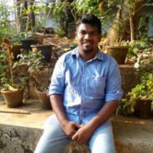Shyahul Krishnan's avatar